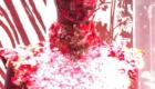 シャネル マドモアゼル プリヴェ展 天王洲アイル CHANEL MADENOISELLE PRIVE 赤 レッド