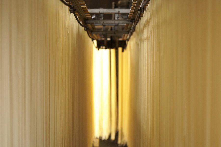 江戸玉川屋 製麺工場 麺のカーテン